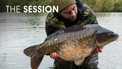 Myles Gibson   The Session   Dinton Black Swan