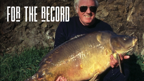 Tim Paisley | For The Record