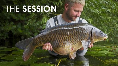 Steve Renyard | The Session | Birch Grove
